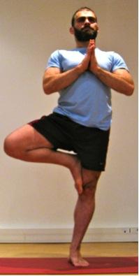 La posture de yoga : l'arbre